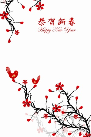 Beautiful background of Chinese New Year greeting card Vector