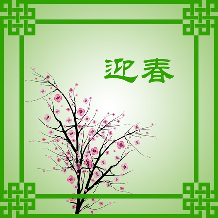 Chinese New Year greeting card background Stock Vector - 11960857
