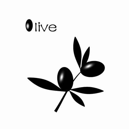 Black olive branch isolated on white background Vector