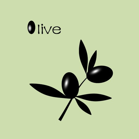 Black olive branch isolated on green background