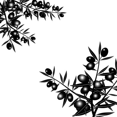 Silhouette of black olive branch isolated on white background Vector