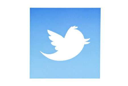 Twitter bird displayed on a computer screen Stock Photo - 12298935