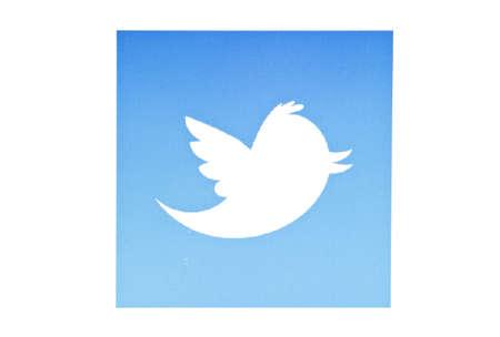 tweet icon: Twitter p�jaro que aparece en una pantalla de ordenador