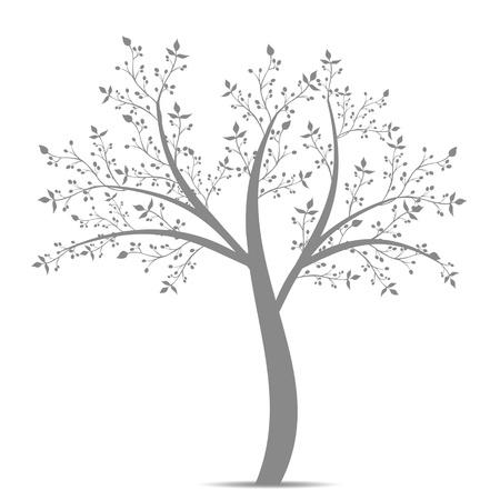 arboles blanco y negro: Olivo aisladas sobre fondo blanco