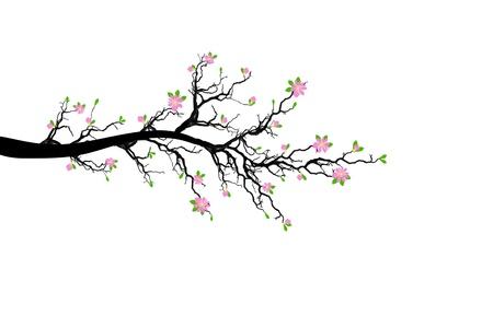 支店: 白い背景上に分離されて春の枝  イラスト・ベクター素材