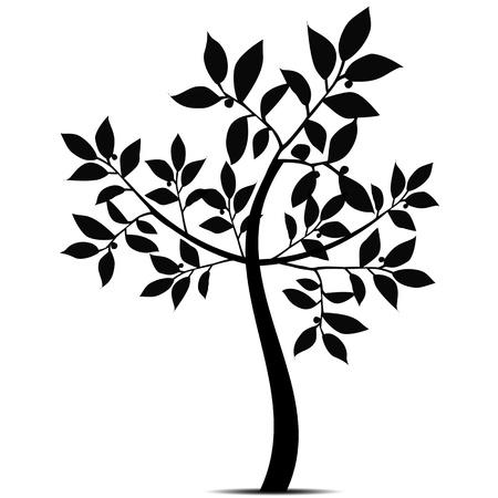 bomen zwart wit: Mooie kunst boom silhouet geïsoleerd op witte achtergrond Stock Illustratie
