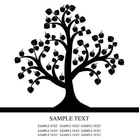 arbol de manzanas: Manzano aisladas sobre fondo negro Vectores