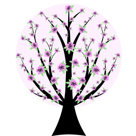 Beautiful cherry blossom tree isloated on white background Vector