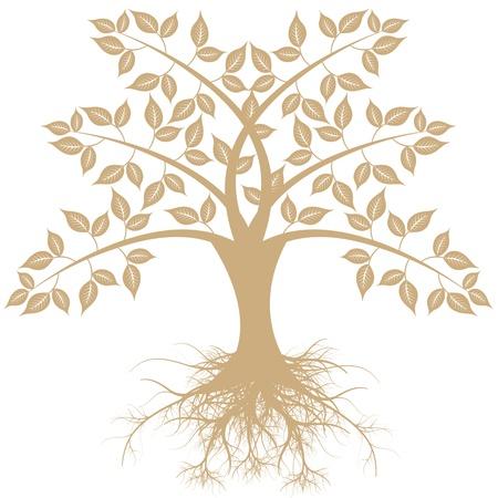 美しい芸術の木の白い背景で隔離  イラスト・ベクター素材
