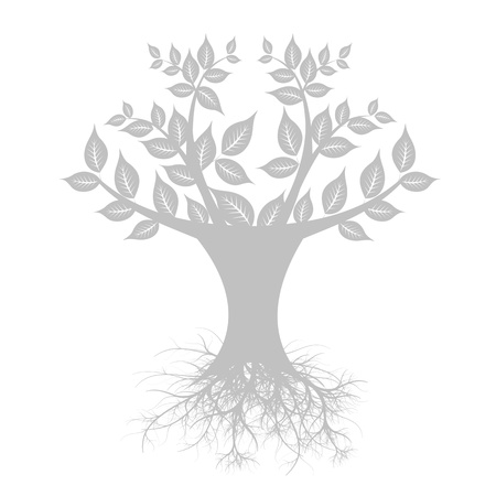 Beautiful art tree isolated on white background Stock Vector - 13813731