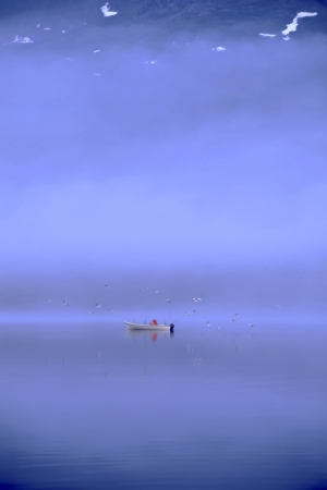 Fishing in the calm sea - Norway photo