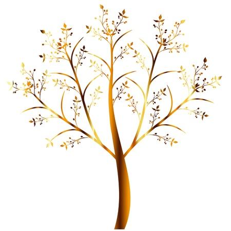 Colorful olive tree isolated on white background Stock Photo - 14316280
