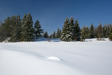 sunny cold days: Beautiful winter landscape in Sweden Stock Photo