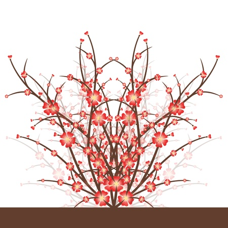 Cherry Blossoms isolated on white background Stock Vector - 17380340