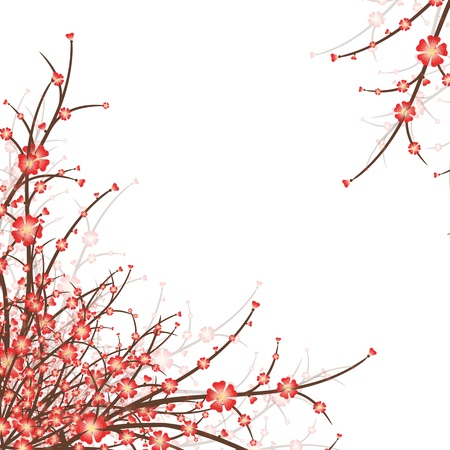 Cherry Blossoms isolated on white background Vector