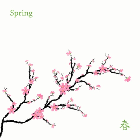 Beautiful spring cherry blossom with chinese text Vector