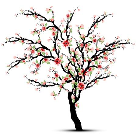 Schöne Kirschblüten Baum isoliert auf weiß Vektorgrafik