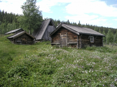Mountain landscape and  wooden cabin in Sweden  photo