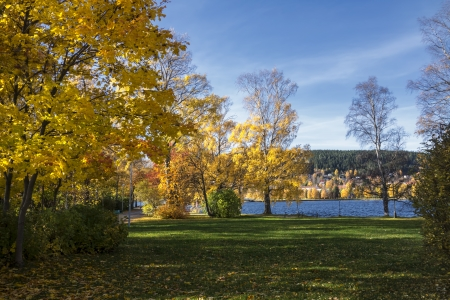 Beautiful leandscape of colorful autumn trees by the lake photo