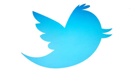 twitter bird isolated on white background
