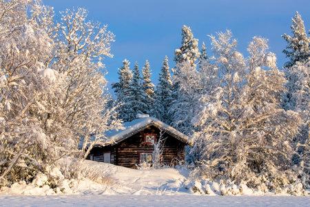 Cabin in winter landscape