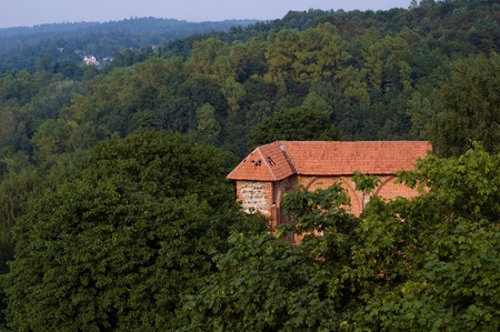Old fortress among the trees on a hill in Vilnius, Lithuania Stock Photo - 8481997