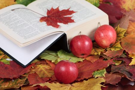 The book with a red maple leaf and apples removed close up on autumn foliage photo