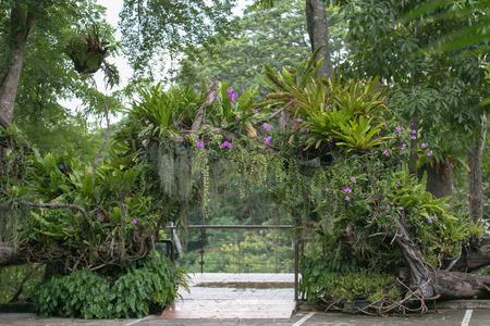 orifice: The door natural