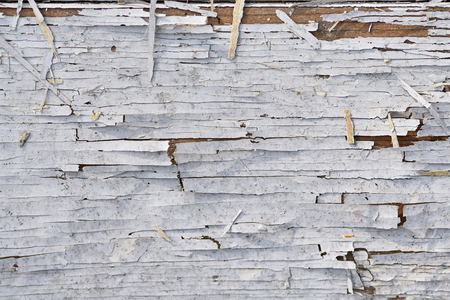 Old wooden wall with white paint. Wooden texture with severely weathered and peeling paint