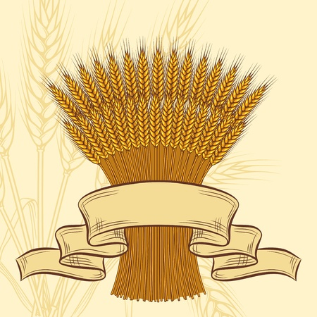 Background with ripe yellow wheat ears, vector illustration
