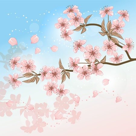 japan sky: Cherry Tree  Card with stylized