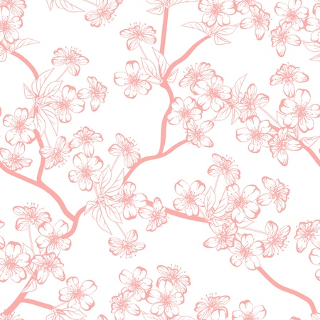 spring in japan: Cherry blossom background   Seamless flowers pattern  Illustration
