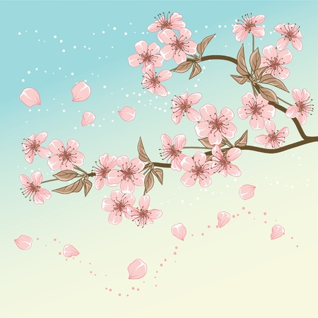 Cherry Tree  Card with stylized Vector