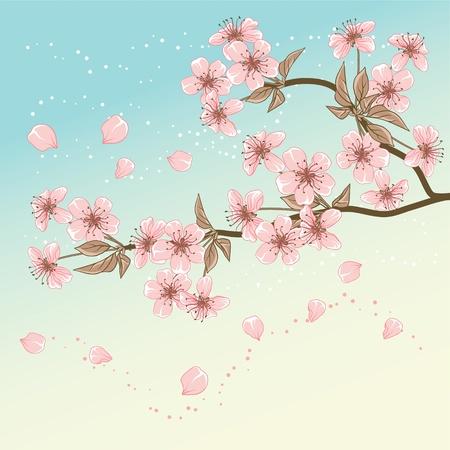 sakuras: Tarjeta de cerezo con estilizados