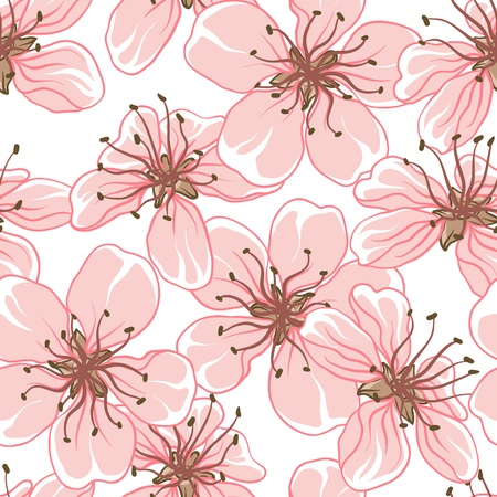 cherry pattern: Cherry blossom background   Seamless flowers pattern  Illustration