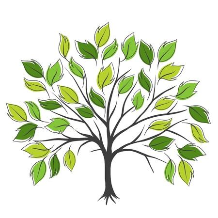 albero stilizzato: Disegnare a mano astratto albero verde, illustrazione vettoriale