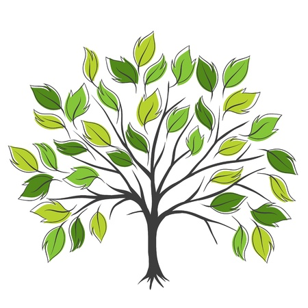 square root: Hand draw abstract green tree, vector illustration