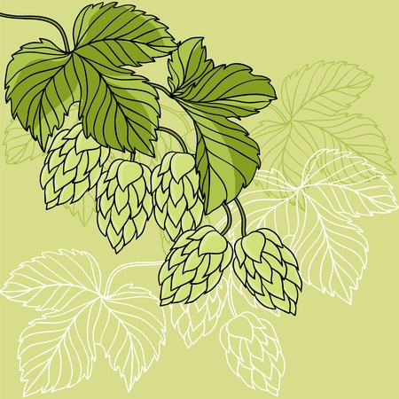 cebada: Hop adornos en verde ilustraci�n Grunge Vectores