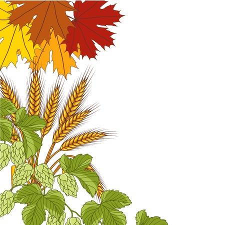 barrels set: Illustration of leaves, wheat, hops bacground  Illustration
