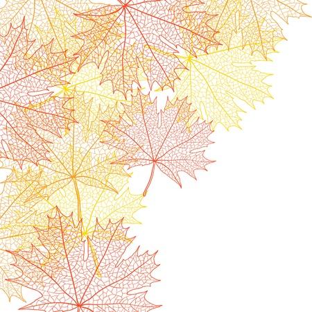 Otoño, hoja de arce bacground Ilustración de vector