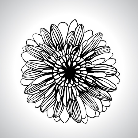 venation:  hand draw flowers set isolated on white