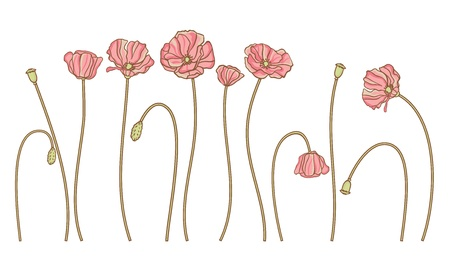 hand draw flowers set isolated on white Stock Vector - 13609448