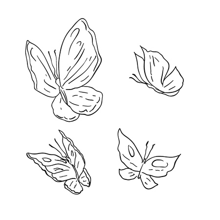 Hand draw grunge butterfly  Vector