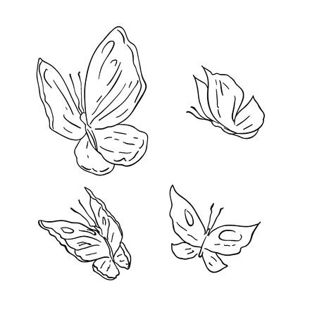 butterfly tattoo: Mano de la cuerda del grunge de la mariposa