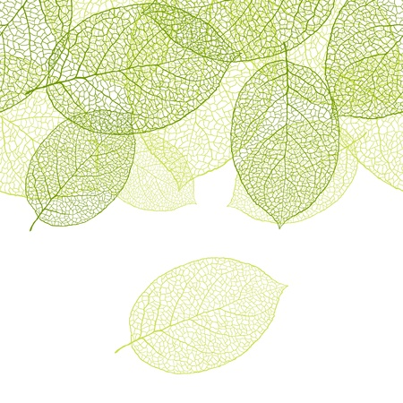 Fresh green leaves background - illustration Vector
