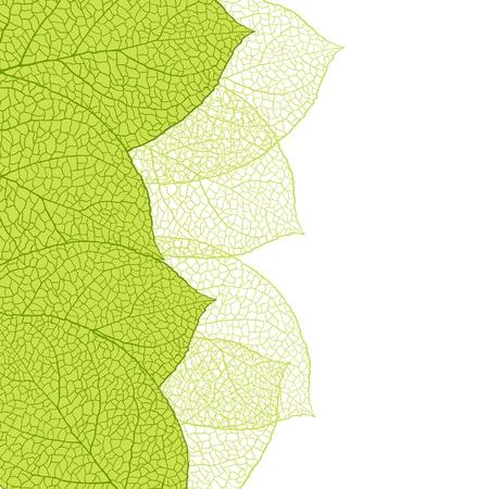 Fresh green leaves background -illustration Stock Vector - 13635559