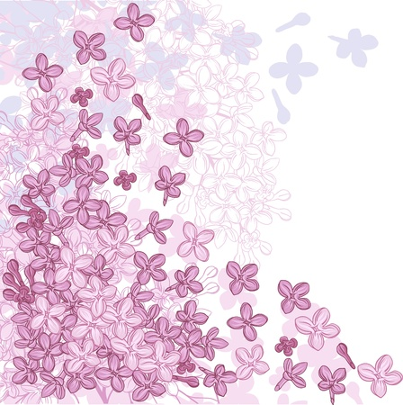 background for design with flowers of lilac Stock Vector - 13711611