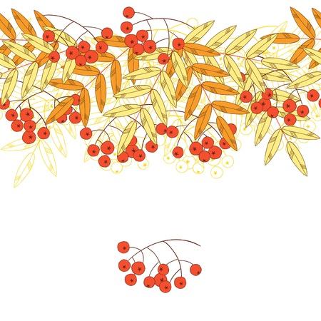 Vogelbeere: Herbstlicher nahtloser Hintergrund mit Vogelbeere und Blättern