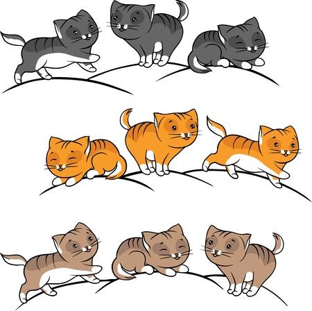 gato dibujo: Colección de lindo juego divertido vector de los gatos
