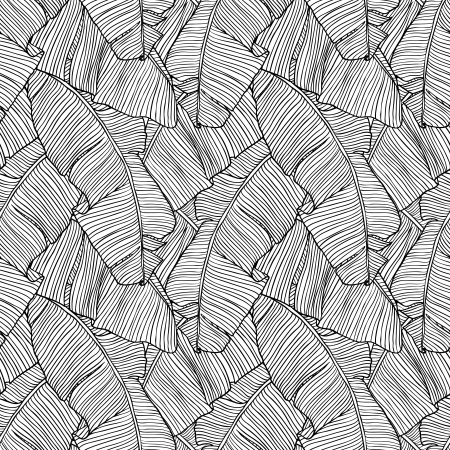 plante tropicale: Vector illustration du motif laisse palmier transparente